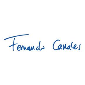 Diseño web Fernando Canales - Net Center 2000